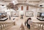 Australian Museum 2018 S46 6224